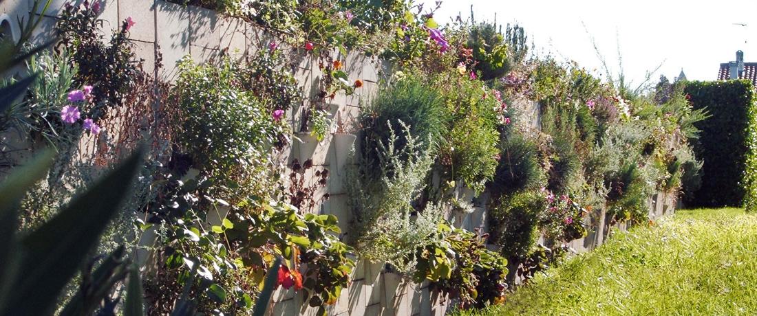 Murs végétalisés et anti-bruits